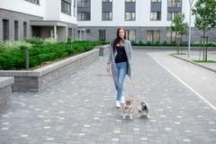 Stående av lyckligt kvinnligt strosa med hennes husdjur på fritid royaltyfria bilder