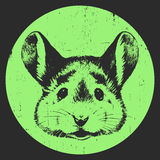 Stående av musen royaltyfri illustrationer
