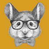 Stående av musen med exponeringsglas och flugan royaltyfri illustrationer
