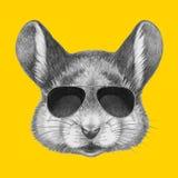 Stående av musen med solglasögon royaltyfri illustrationer