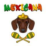 Stående av taxhunden med sombreron och maracas mexico vektor vektor illustrationer
