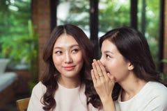 Stående av träffande hemligheter för en flicka till hennes häpna vän i let Royaltyfri Fotografi