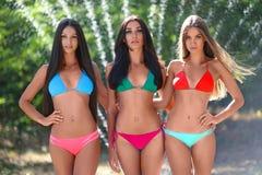 Stående av tre härliga sexiga flickor på stranden Royaltyfri Foto
