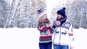 Stående av trevliga par som går i vinterskogen lager videofilmer