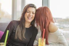 Stående av två unga charmiga kvinnor på coffee shop royaltyfri foto