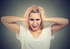 Stående av upprivet stressat skrika för ung kvinna royaltyfria bilder