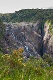 Stående Barron Falls i Barron Gorge National Park, Kuranda Australien royaltyfria bilder