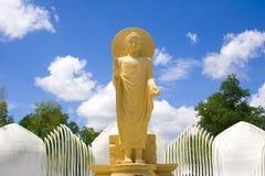 Stående Buddha. Royaltyfri Fotografi