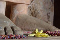 Stående Buddha i Sri Lanka Royaltyfri Fotografi