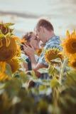Stående det fria för förälskelsepar i solrosfält Royaltyfri Bild