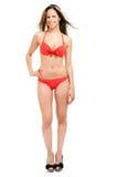 Stående för längd för bikini för härlig kvinna bärande full royaltyfria bilder