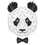 Stående för pandabjörn Royaltyfria Foton