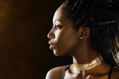 Stående för studioprofilskönhet av den afrikanska flickan arkivbild