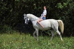 Stående för trän för vit häst för attraktiv flicka för skönhet rid- barbacka mörk arkivfoto