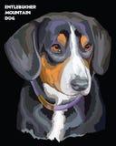 Stående för vektor för Entlebucher berghund färgrik Arkivbilder