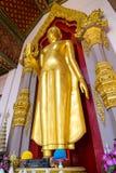 Stående guld- buddha staty på ingången av den storslagna pagoden i Na Royaltyfri Foto
