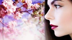 Stående i profil, ung härlig brunettkvinna med ljusa kanter Läppstiftlilafärg, fritt utrymme, Arkivfoton