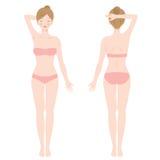 Stående kvinnlig kropp