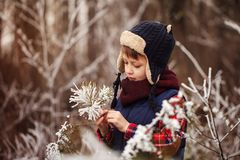 Stående som grubblar den gulliga pojken i varm vinterskog Arkivfoto
