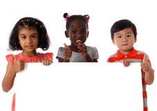 Stående tre av blandras- ungar i studio med det vita brädet isolerat arkivfoton