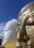 Ståendearkitekturen av guld- och vita buddha vänder mot Royaltyfri Foto