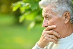 Ståenden av den äldre mannen i sommar parkerar arkivbilder