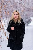 Ståenden av den blonda kvinnan fotografering för bildbyråer