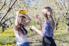 Ståenden av den härliga unga kvinnan, i att blomma för äppleträd, parkerar på en solig dag Le den lyckliga flickan för flicka let Arkivbilder