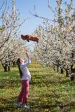 Ståenden av den härliga unga kvinnan, i att blomma för äppleträd, parkerar på en solig dag Le den lyckliga flickan för flicka Lyc Arkivfoton