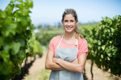 Ståenden av den kvinnliga bonden med armar korsade på vingården royaltyfri foto