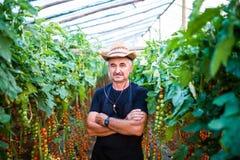 Ståenden av det säkra manliga trädgårdsmästareanseendet med armar korsade på växthuset royaltyfri foto