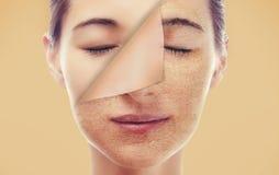 Ståenden av en kvinna med ett nytt slätar hud Arkivbilder