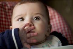 Ståenden av 8 gamla månader behandla som ett barn Arkivfoton