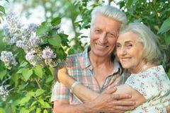 Ståenden av härliga höga par som kramar i, parkerar vid lilor royaltyfri fotografi
