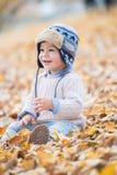 Ståenden av härligt behandla som ett barn pojken som sitter på sidorna säsong för bana för höstfallskog royaltyfri bild