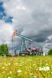 Stålar för den olje- pumpen i ett fält av kamomillen blommar under mörka molniga himlar Royaltyfria Bilder
