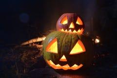Stålar för två halloween pumpor vänder mot i den mörka skogen på ädelträ Royaltyfria Foton