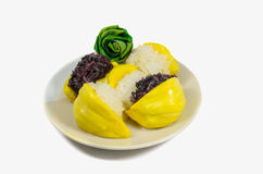 Stålar med klibbig rice Fotografering för Bildbyråer