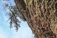Stålrepet på ett brant vaggar med trädet på dess överkant arkivfoto