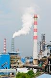 Stålsätta växtförorening Arkivfoto
