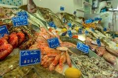St?nd med ny skaldjur royaltyfria bilder
