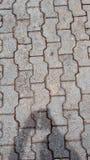 Ståndarknapptegelsten i trottoaren Royaltyfri Fotografi