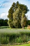 STÅNDSMÄSSIGA OFFALY, IRLAND - AUGUSTI 23, 2017: Birrslottträdgårdar i ståndsmässiga Offaly, Irland Royaltyfri Bild