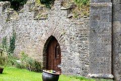 STÅNDSMÄSSIGA OFFALY, IRLAND - AUGUSTI 23, 2017: Hoppa slotten är en av de mest spökade slottarna i Irland Arkivfoto