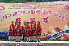 ståndsmässigt guangxilandskap t som för 3rd porslin 2012 wuming Arkivfoton