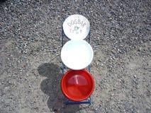 Stångrestaurang för hundkapplöpning Royaltyfria Foton