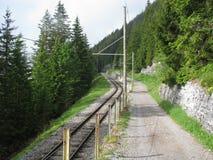 Stångväg i skogen av Interlaken område Arkivfoto