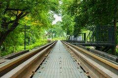 Stångväg och gräsplanträd Royaltyfria Foton