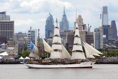 Ståta av seglar Royaltyfria Bilder