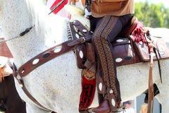 Ståta hästen och ryttaren Royaltyfria Foton